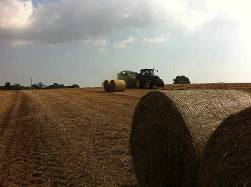 Baling straw at harvest